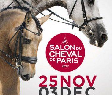 Salon du cheval de paris du 25 novembre au 3 decembre 2017 for Salon du cheval paris 2018