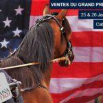 prix-d-amerique-catalogue-en-ligne_2